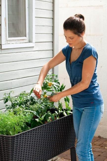 Donica samonawadniającaKeter Easy Grow